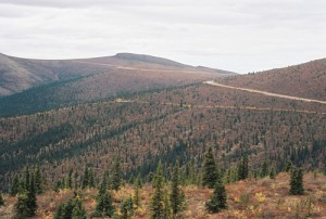 rlj_Mavis_Yukon_Alaska_20100626-018