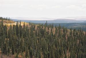 rlj_Mavis_Yukon_Alaska_20100626-022